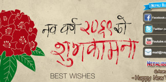 Happy New Year 2069
