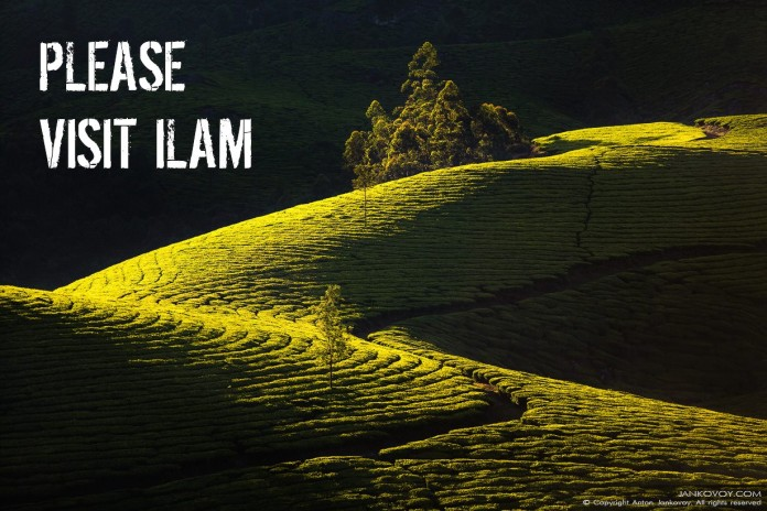 Visit ilam in Nepal